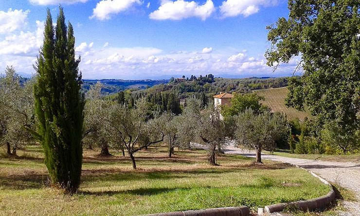 Fine Art Travel in Tuscany
